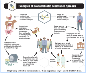 Keeping Patients Safe From Emerging Antibiotic Resistant Bacteria
